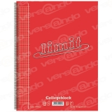 Notebook 80 sheets DIN A4 squared and perforated